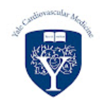 Yale Cardiovascular Medicine Photo